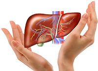 Những điều cần lưu ý về Mỡ máu và gan nhiễm máu